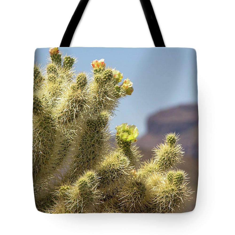 Cactus Tote Bag featuring the photograph Teddy Bear Cholla Cactus With Flower by Amy Sorvillo