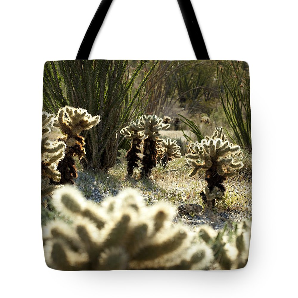 Teddy Bear Cholla Tote Bag featuring the photograph Teddy Bear Forest by Kelley King