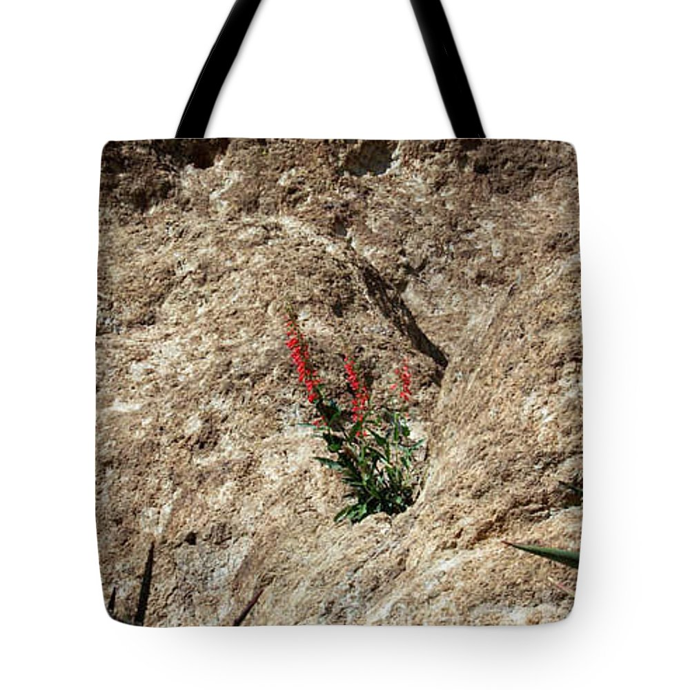 Wildflowers; Flowers Tote Bag featuring the photograph Tenacity by Kathy McClure