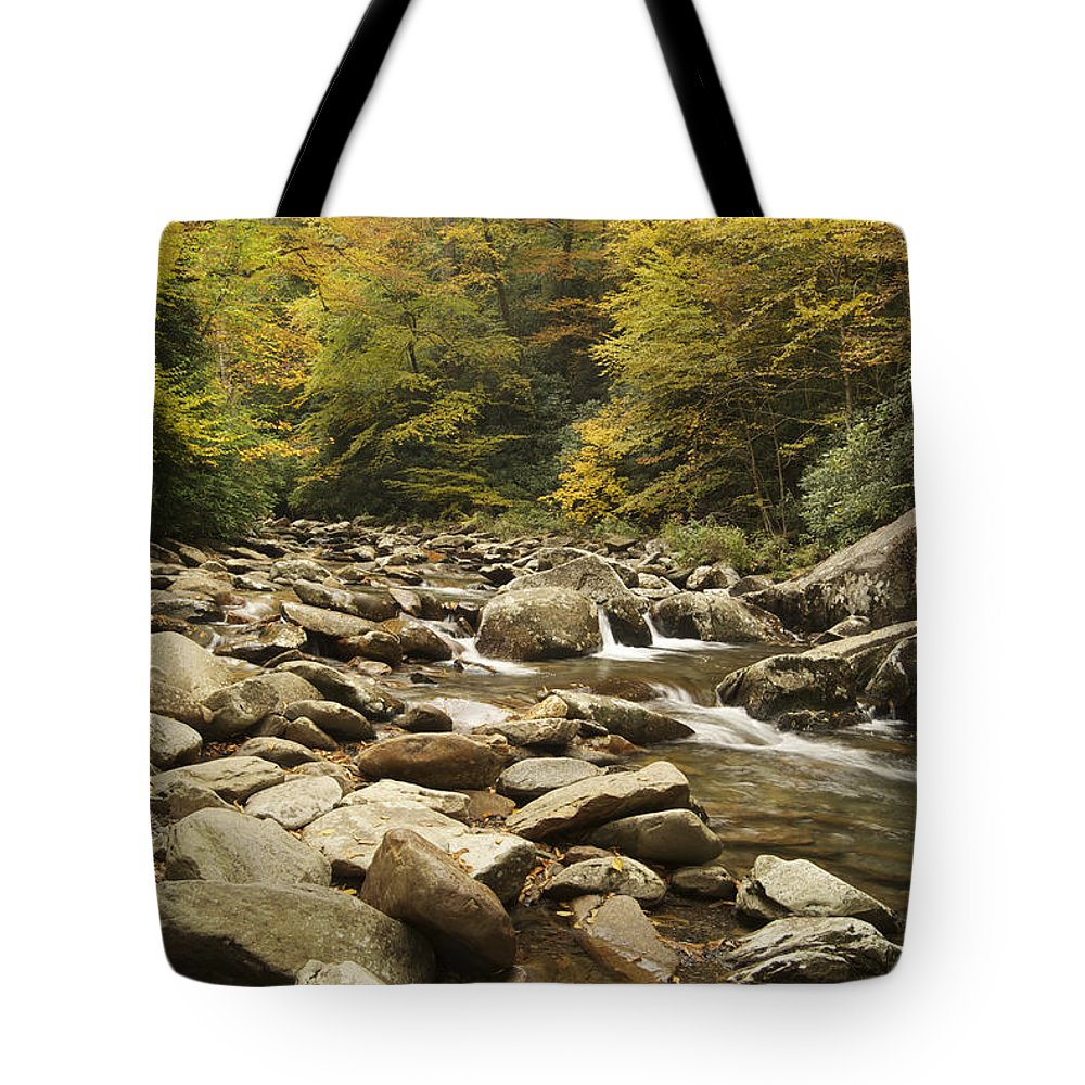 Autumn Tote Bag featuring the photograph Tennessee Autumn Stream 6059 by Michael Peychich
