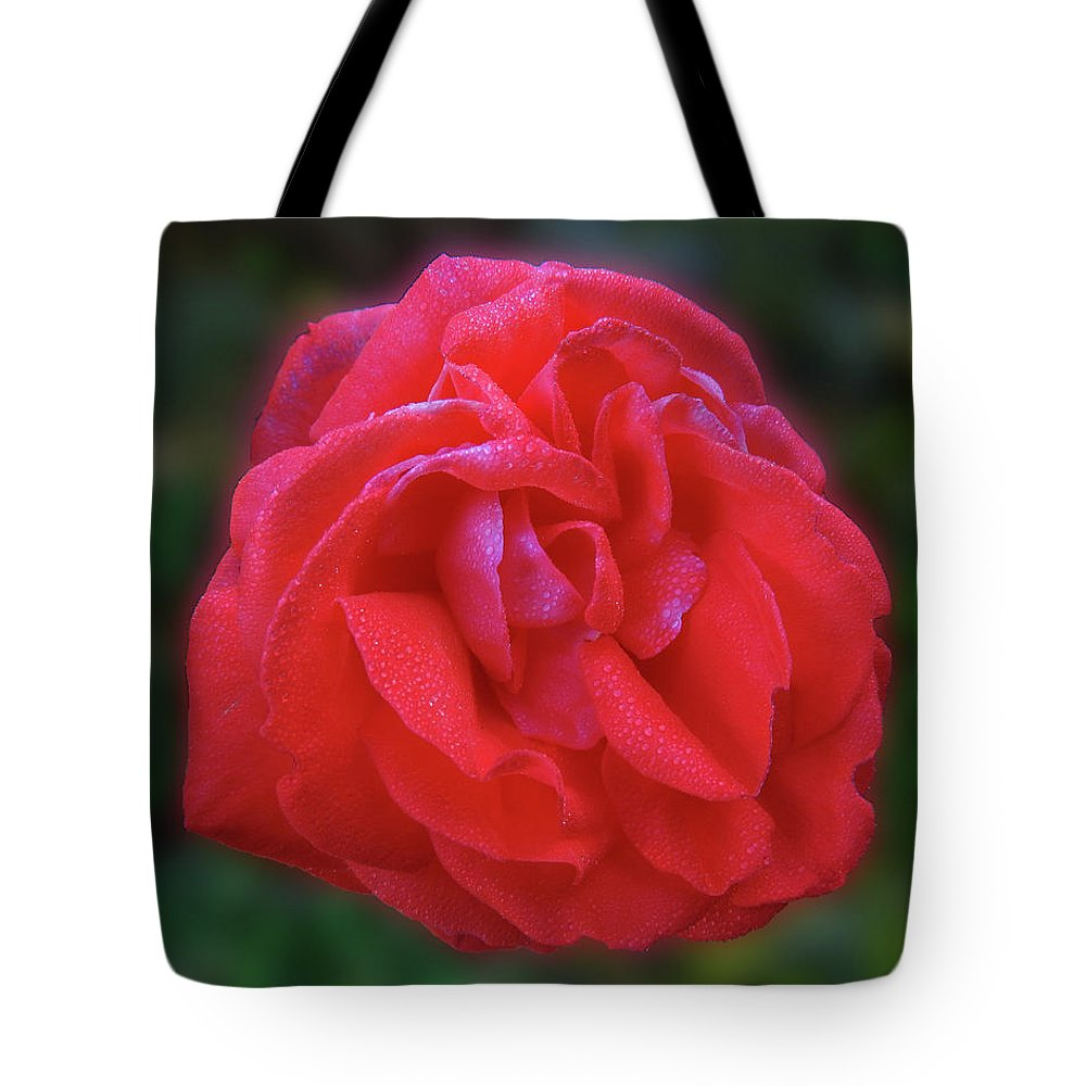 Rose Tote Bag featuring the photograph Teresa by Mark Blauhoefer