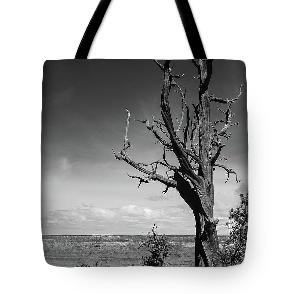 Grand Canyon Tote Bag featuring the photograph Test Of Time by Martina Schneeberg-Chrisien