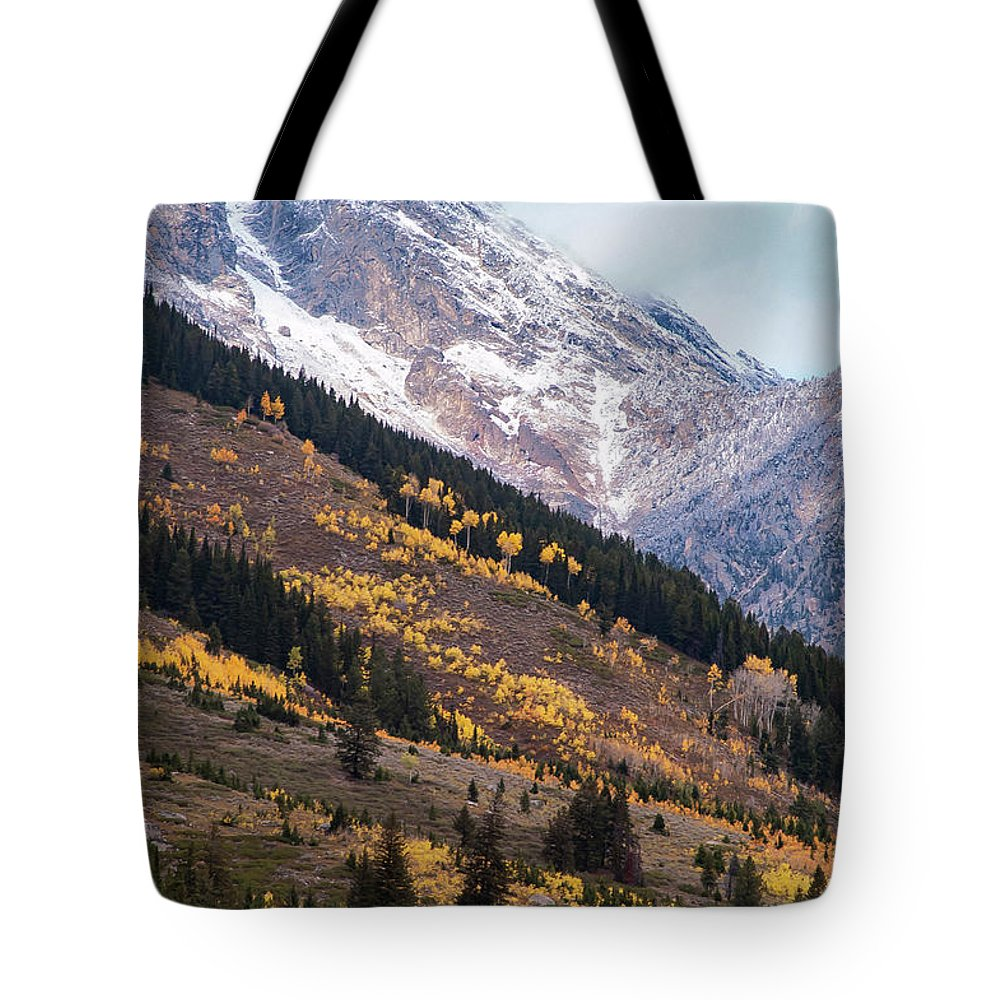 Grand Teton National Park Tote Bag featuring the photograph Teton Colors by Bob Phillips