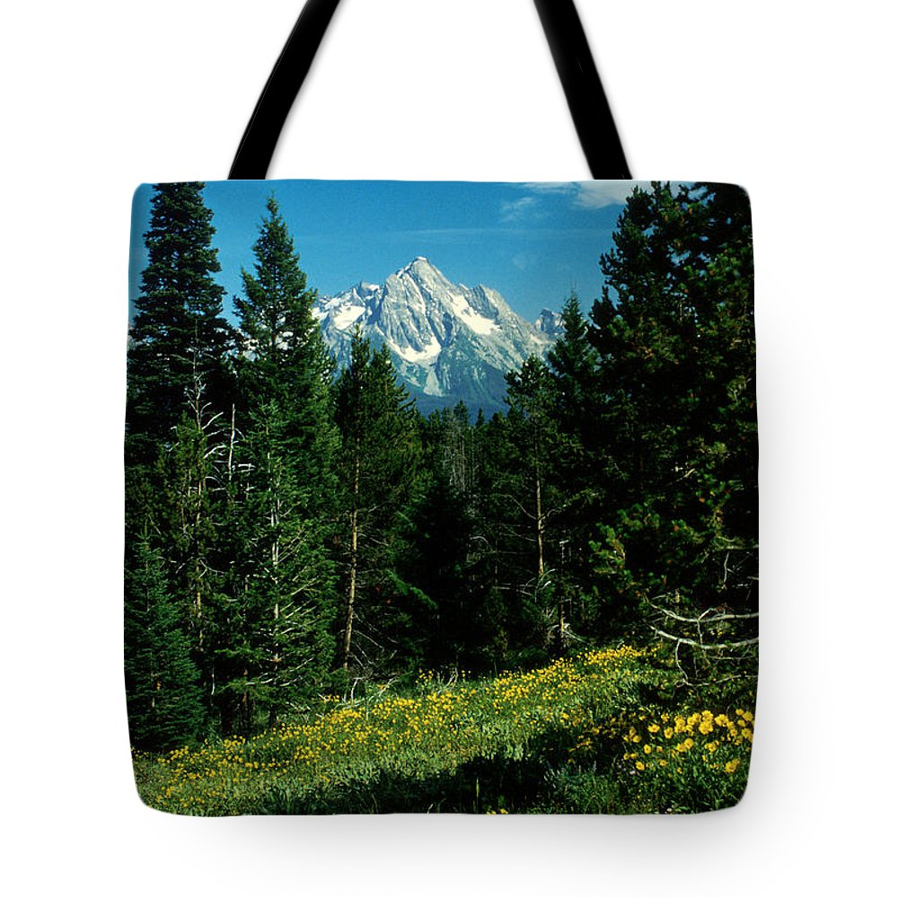 Wyoming Tote Bag featuring the photograph Teton Meadow by Jerry McElroy