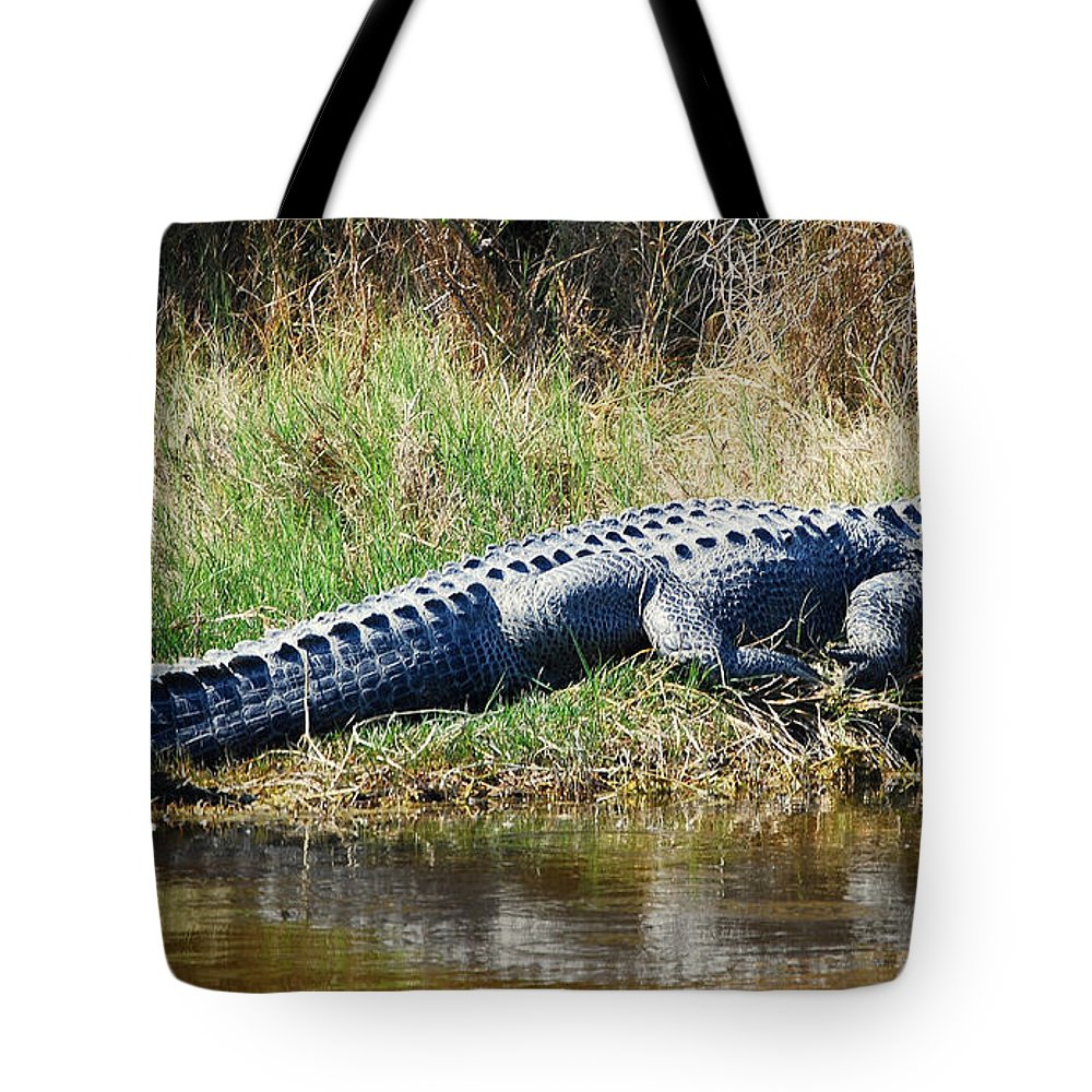 Wildlife Tote Bag featuring the photograph Texas Alligator by Rupert Chambers