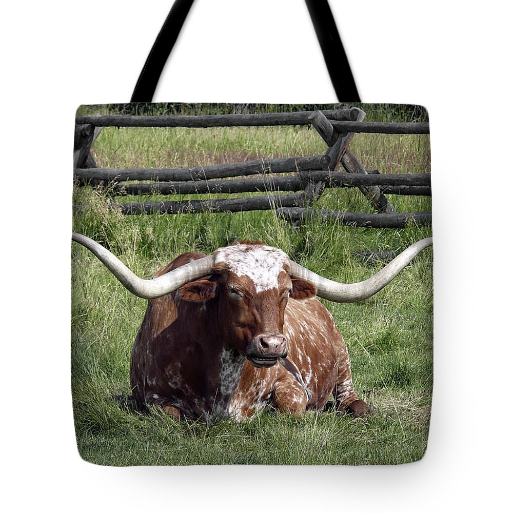 Longhorn Tote Bag featuring the photograph Texas Longhorn Bull At Rest by Daniel Hagerman