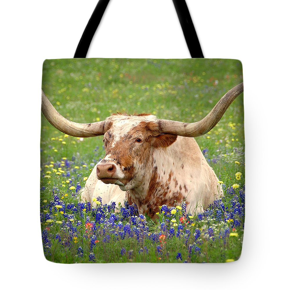 Texas Longhorn In Bluebonnets Tote Bag featuring the photograph Texas Longhorn In Bluebonnets by Jon Holiday