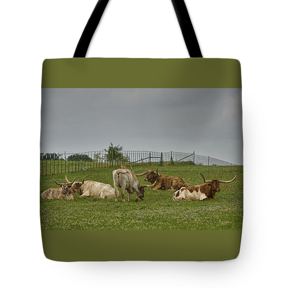 Texas Longhorns Tote Bag featuring the photograph Texas Longhorns And Wildflowers by Jonathan Davison