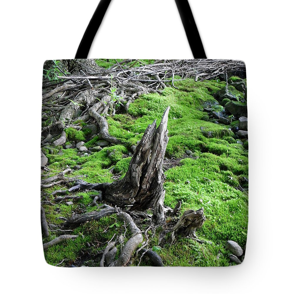 Nature Tote Bag featuring the photograph Textured by Peggy King