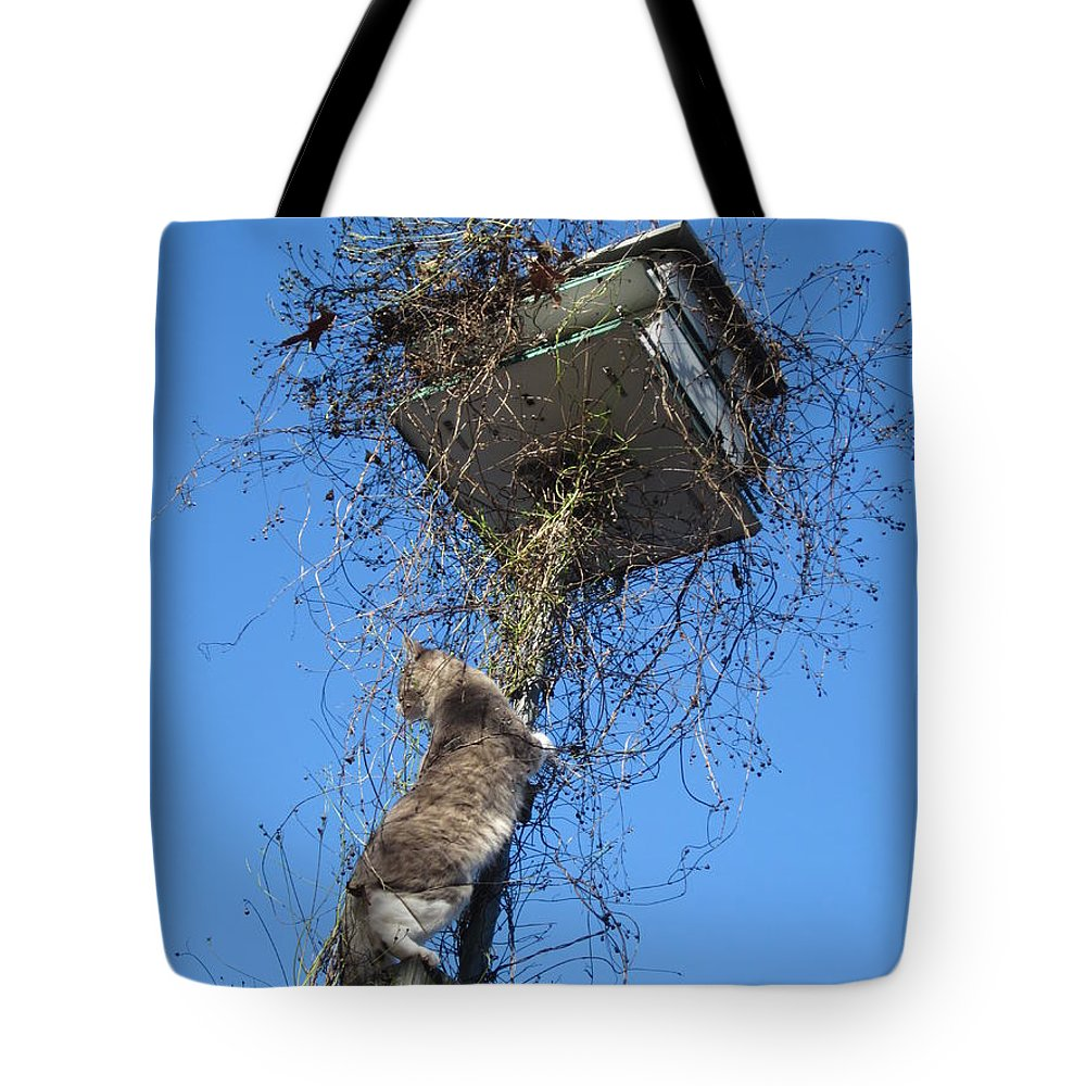 Cat Tote Bag featuring the photograph Thanksgiving Dinner by David Sutter
