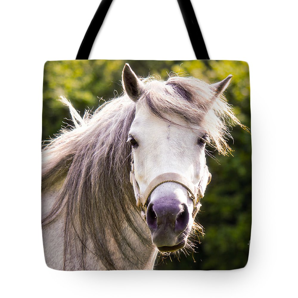 Welsh Pony Tote Bag featuring the photograph That's Lulu by Angela Doelling AD DESIGN Photo and PhotoArt