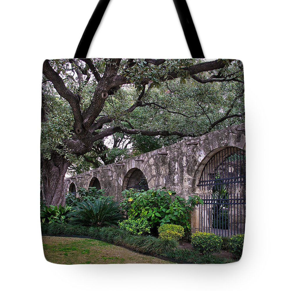 Tree Tote Bag featuring the photograph The Alamo Oak by David and Carol Kelly