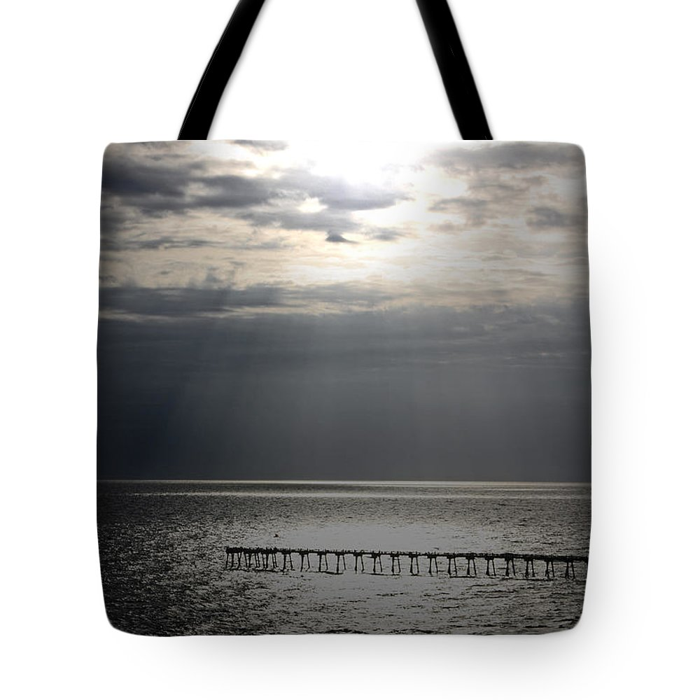 Beach Tote Bag featuring the photograph The Angel Speaks by Tamivision