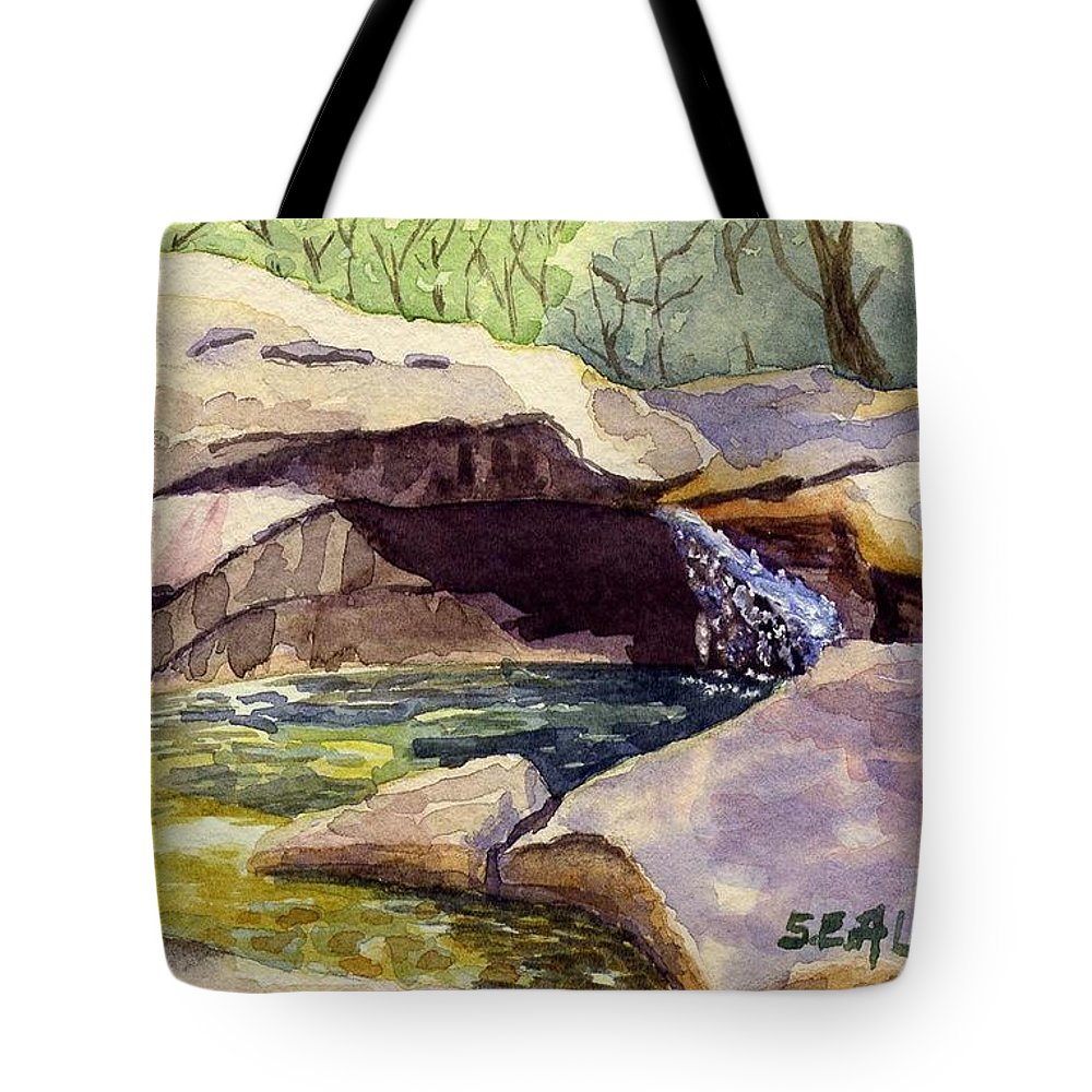 The Basin Tote Bag featuring the painting The Basin by Sharon E Allen