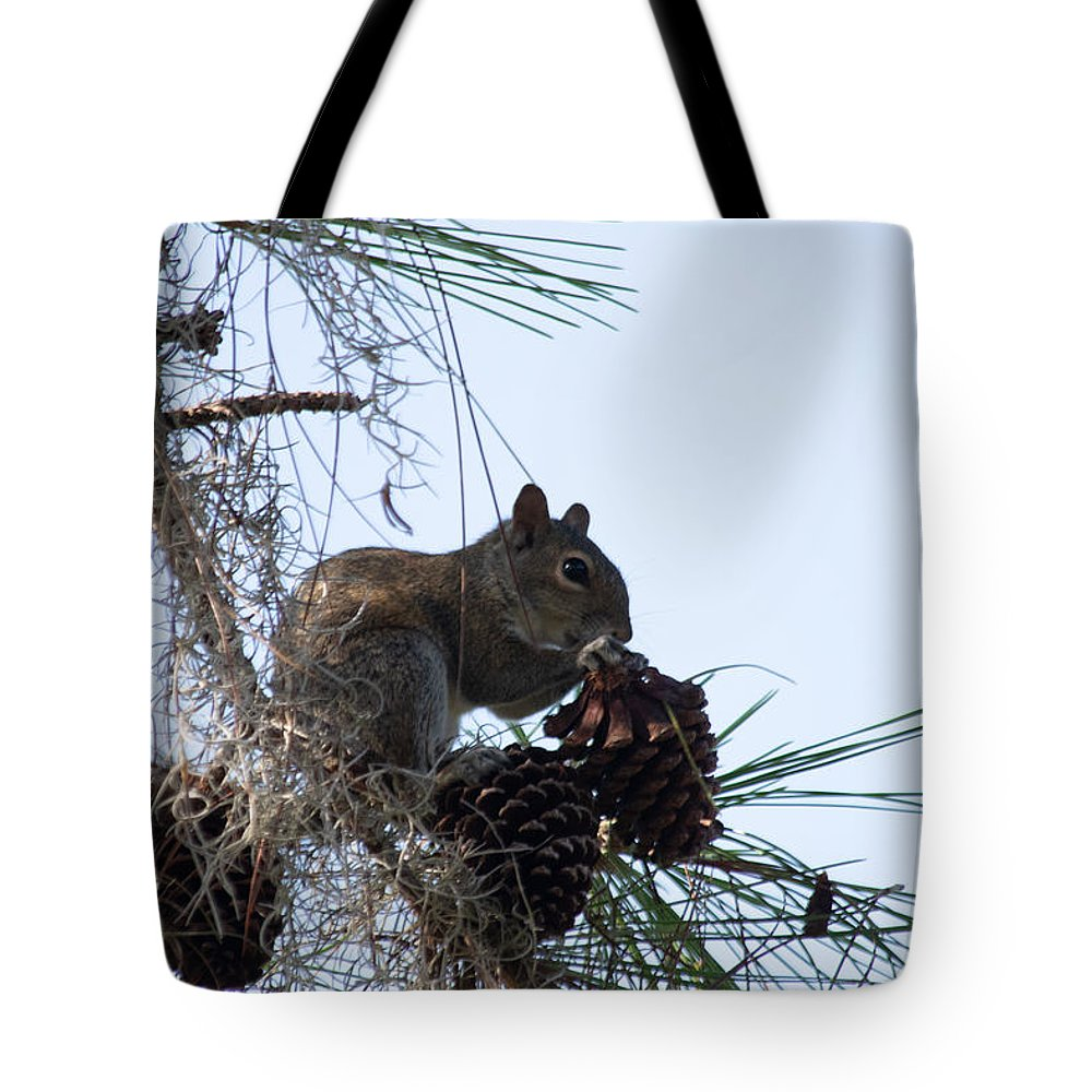 Pinecone Tote Bag featuring the photograph The Best Kind Of Cone by JR Cox