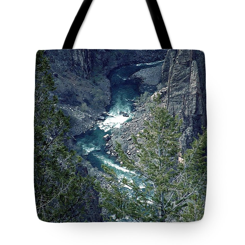 Canyon Tote Bag featuring the painting The Black Canyon Of The Gunnison by RC DeWinter