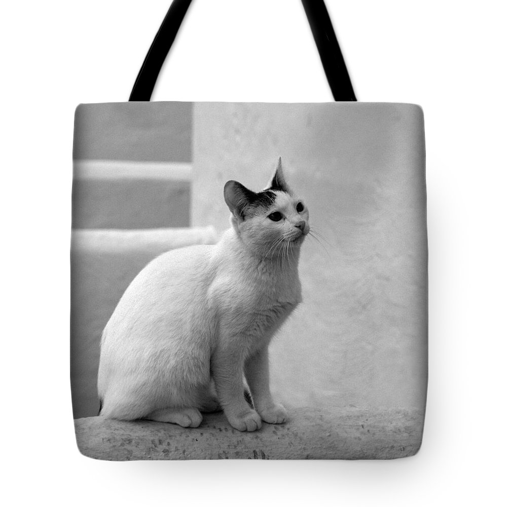 Landscape Tote Bag featuring the photograph The Blond 3 by Jouko Lehto