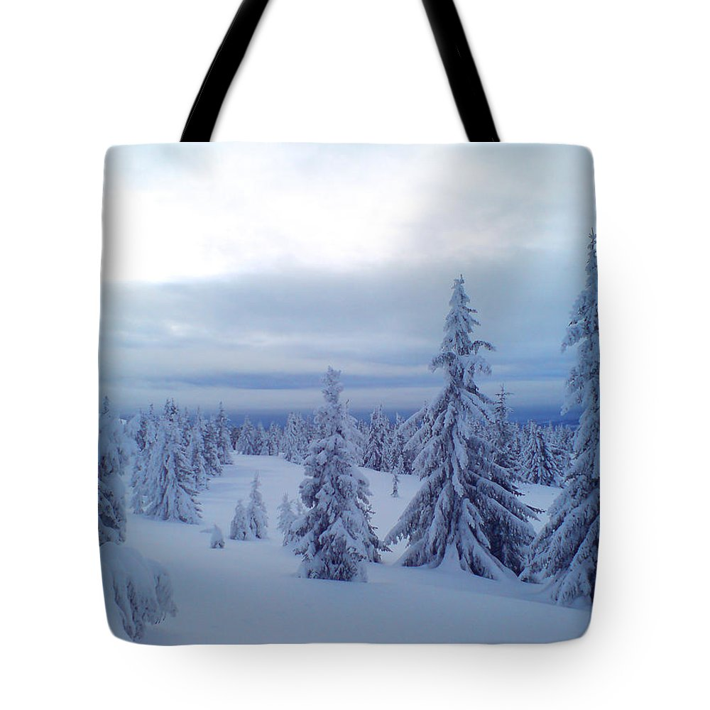 Trees Tote Bag featuring the photograph The Blue Hour by Are Lund