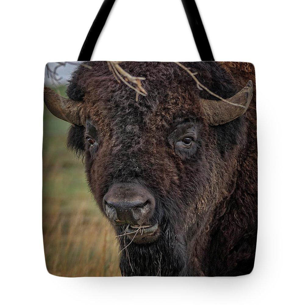 Buffalo Tote Bag featuring the photograph The Buffalo 2 by Ernie Echols