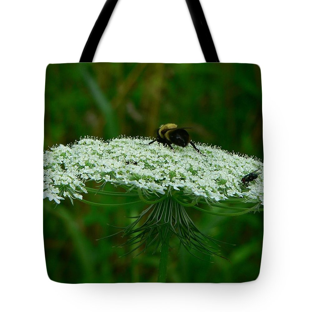 Bumblebee Tote Bag featuring the photograph The Bumblebee And The Fly by RiaL Treasures