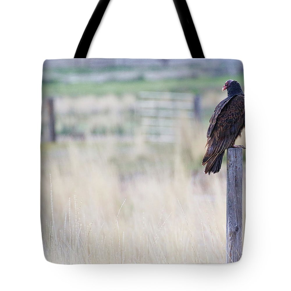Buzzard Tote Bag featuring the photograph The Buzzard by Steve McKinzie