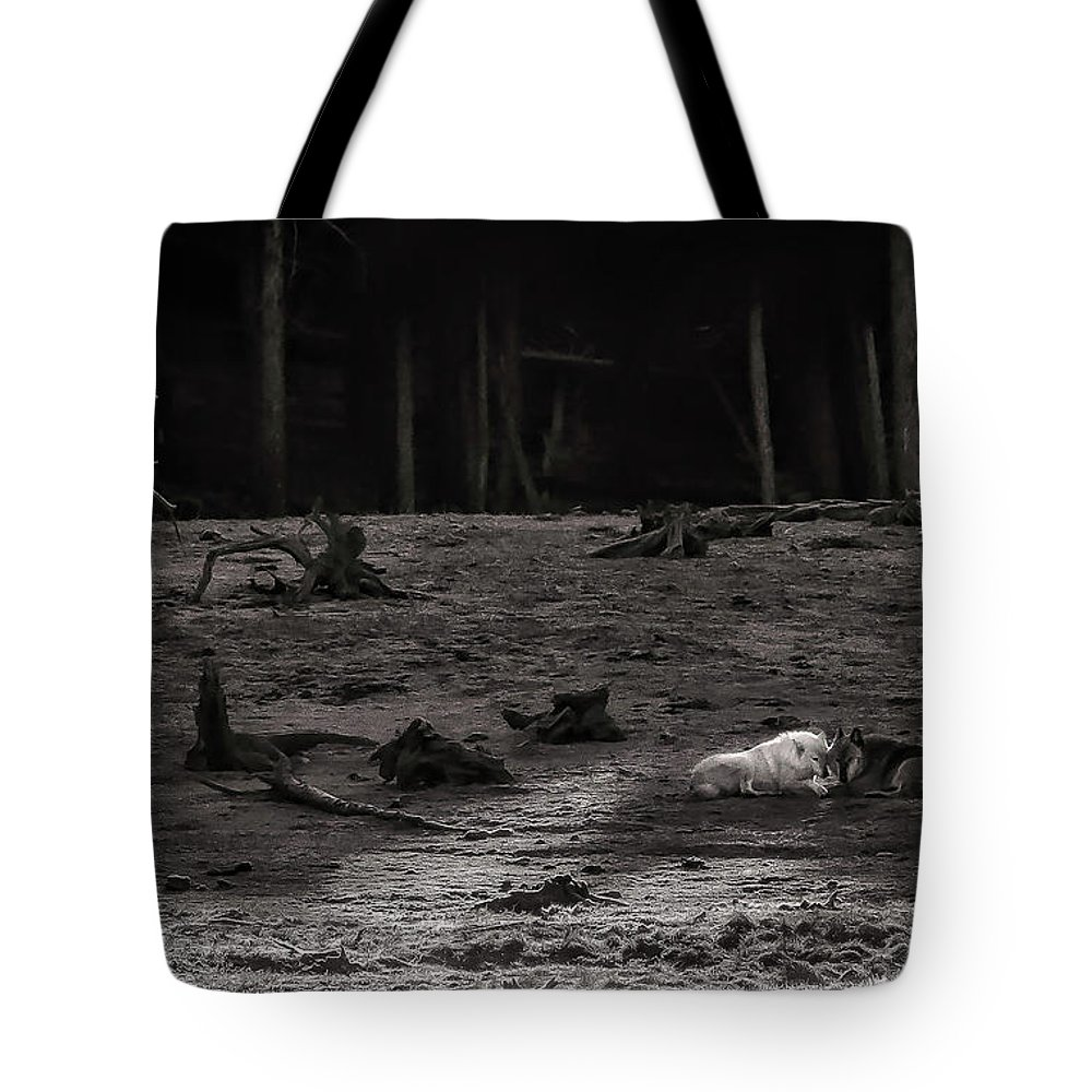 Yellowstone Tote Bags