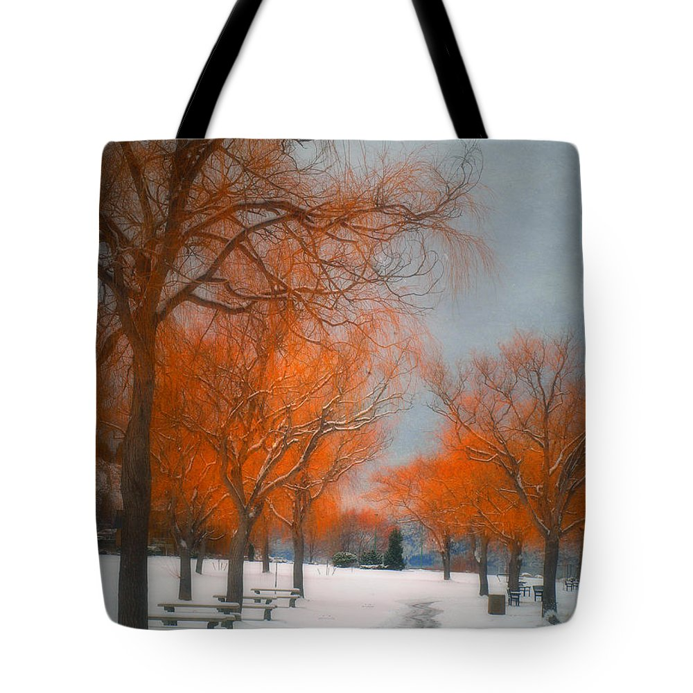 Summerland Tote Bag featuring the photograph The Colours Of Winter by Tara Turner