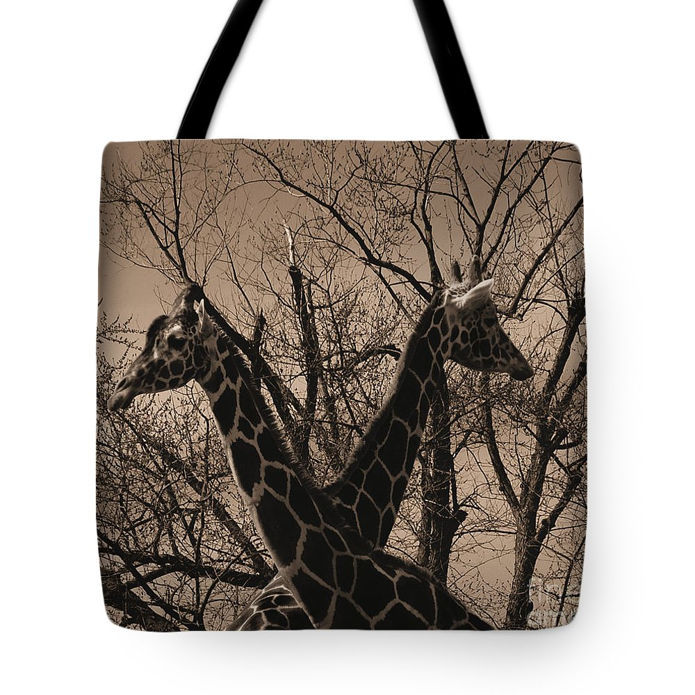 Sepia Tote Bag featuring the photograph The Crossing by September Stone