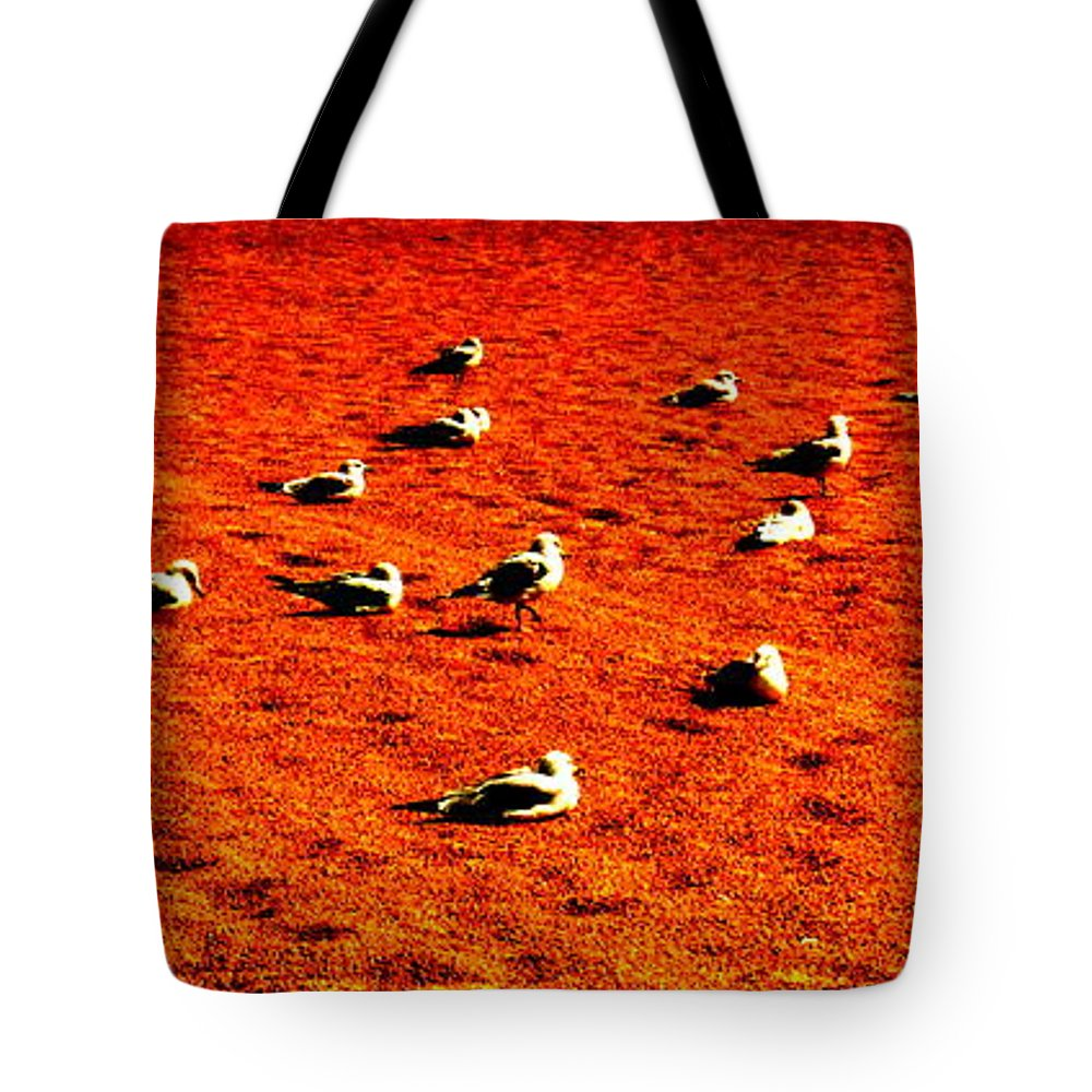 The Dance Tote Bag featuring the photograph The Dance By Earl's Photography by Earl Eells a