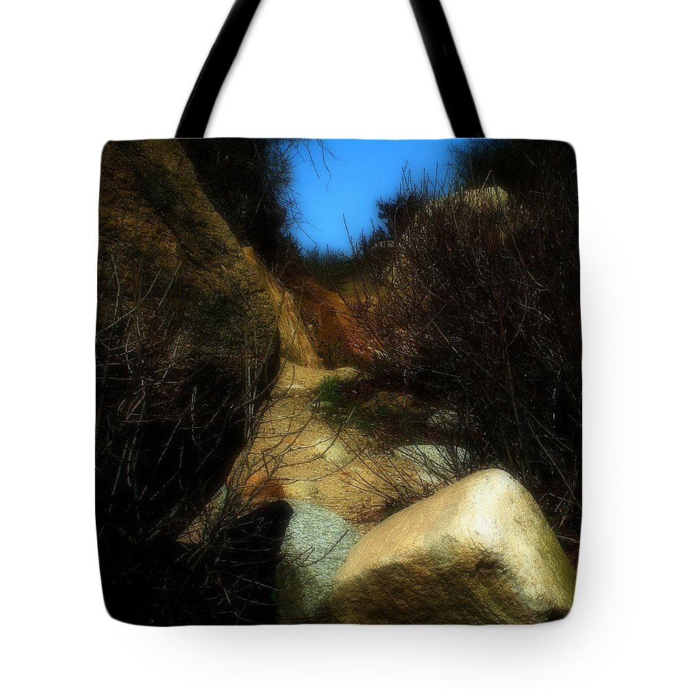 Beach Tote Bag featuring the photograph The Delicacy Of A Summer Night by RC DeWinter