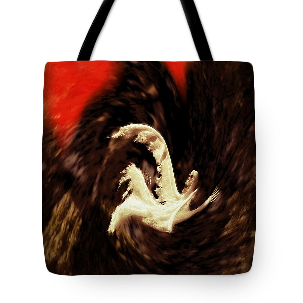 Hellenistic Tote Bag featuring the photograph The Descent by John Greim
