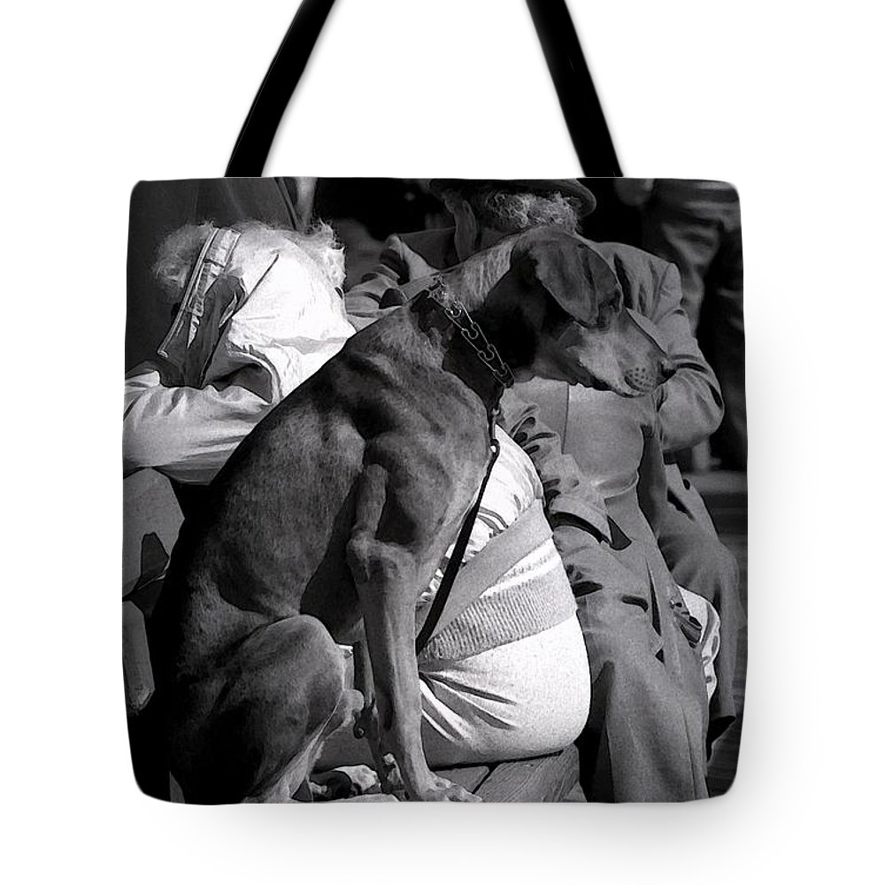 Dog Tote Bag featuring the photograph The Dog On A Bench by Jeff Breiman