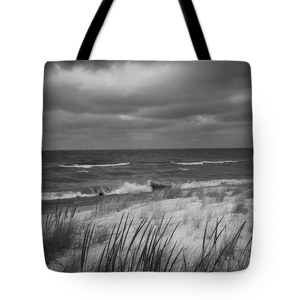 Indiana Dunes Tote Bag featuring the photograph The Dunes In Winter by Rita Anthony