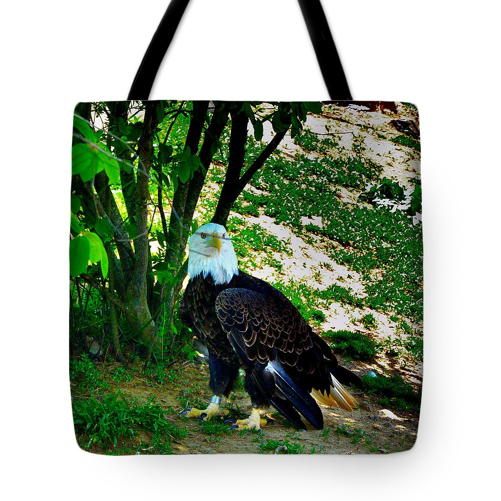 Eagle Tote Bag featuring the photograph The Eagle Has Landed by Bill Cannon