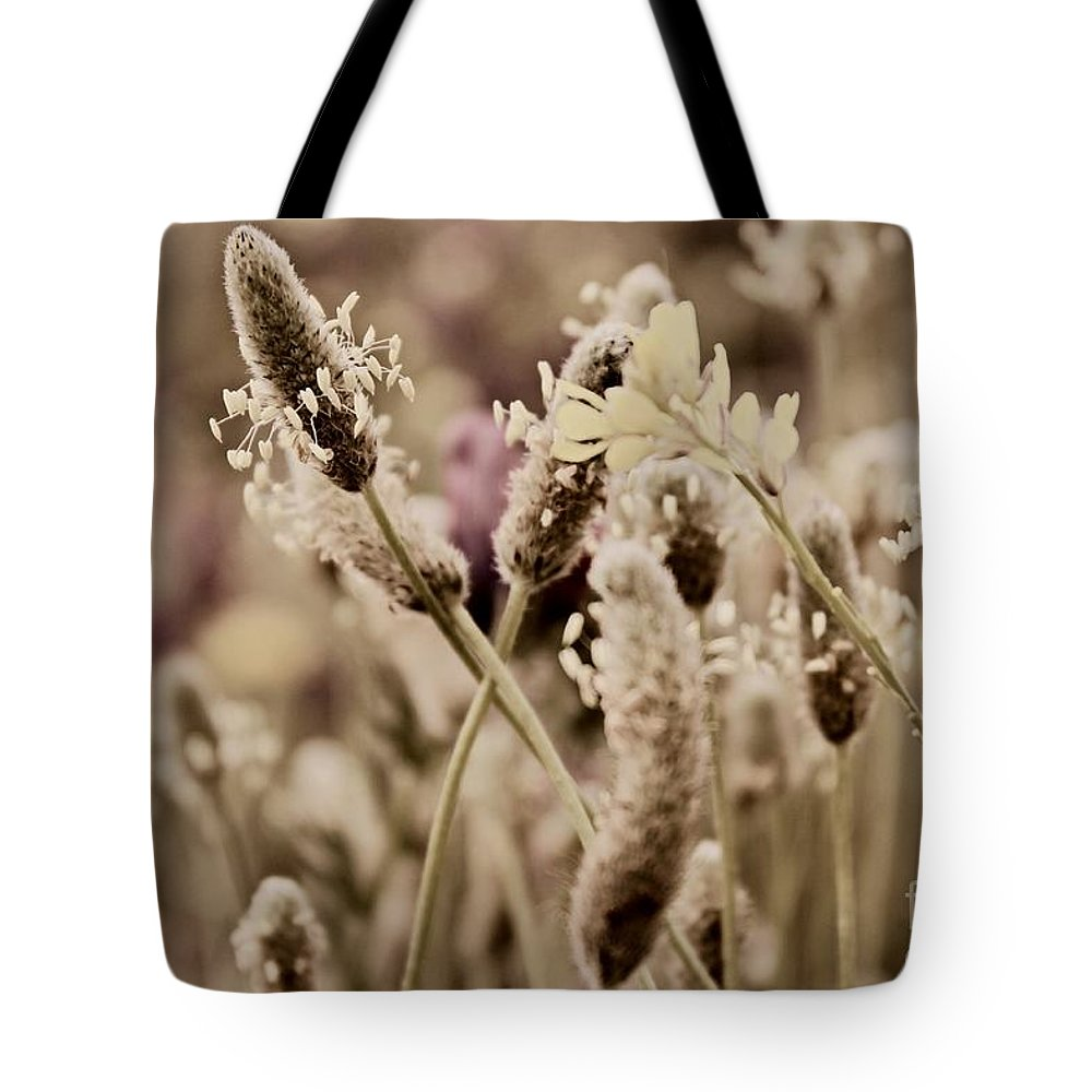 Dandelions Tote Bag featuring the photograph The End by Clare Bevan