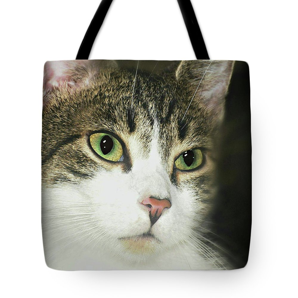 The Face Tote Bag featuring the photograph The Face Of Neglect by Diana Angstadt