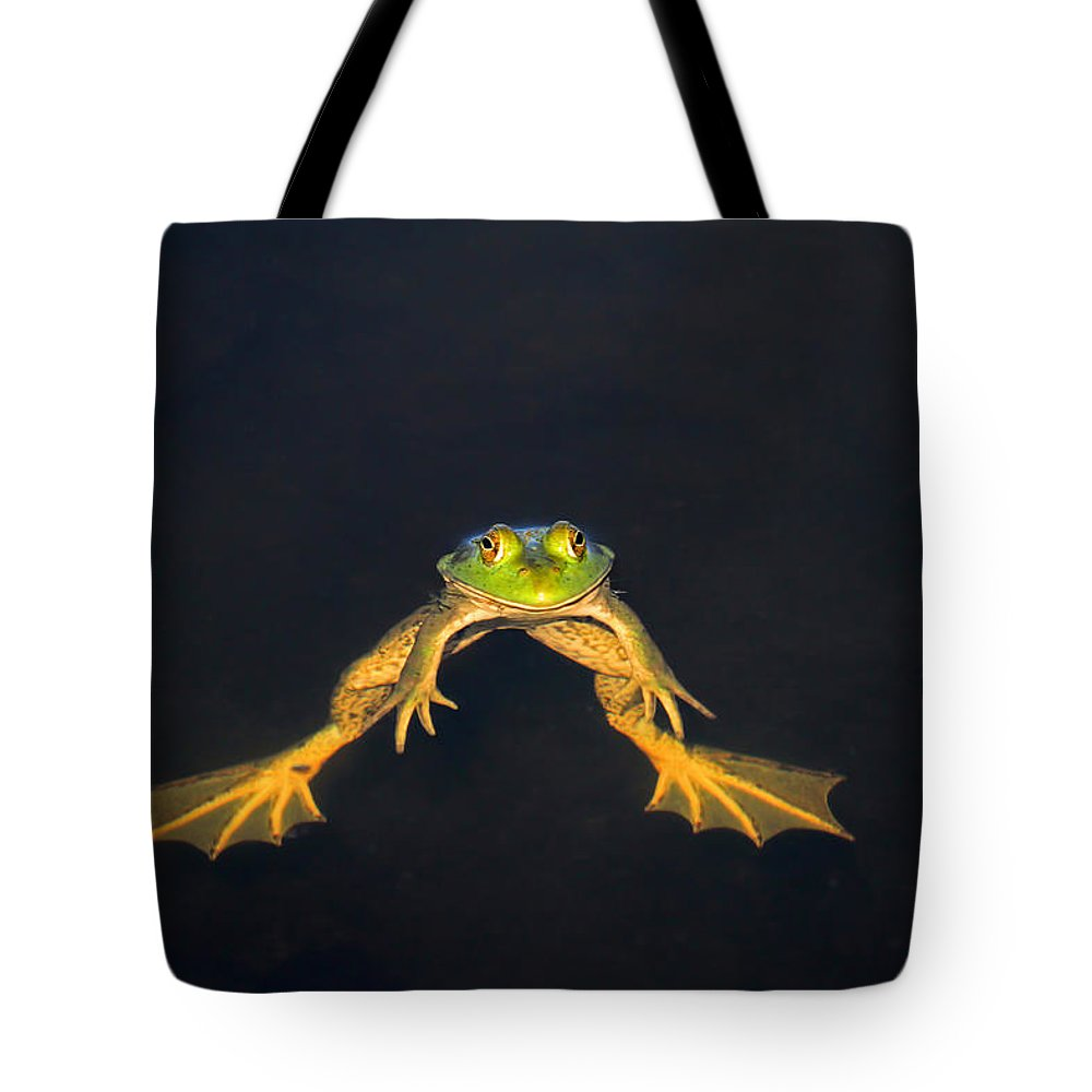 Bullfrog Tote Bag featuring the photograph The Floater by Donna Kennedy