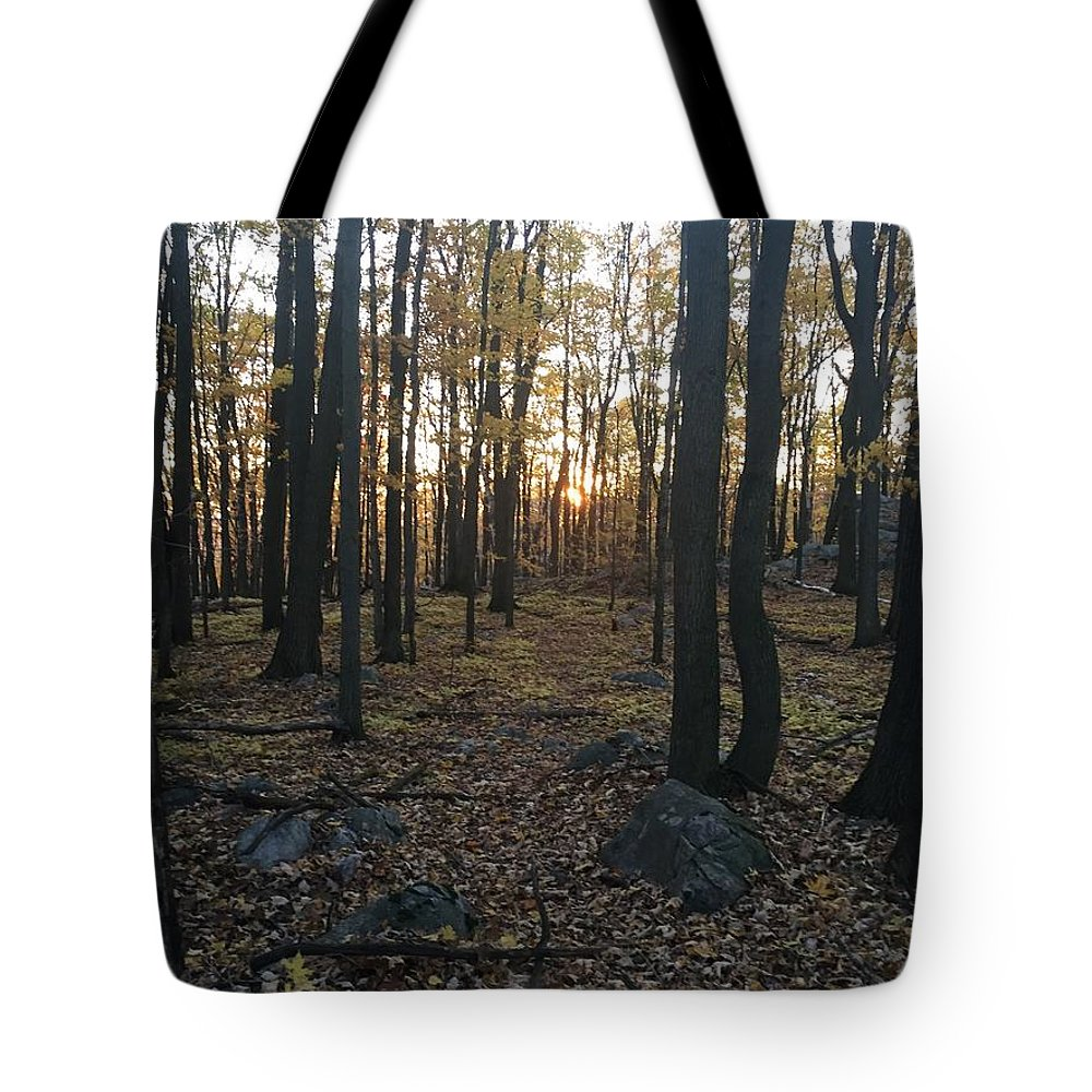 Tote Bag featuring the photograph The Forest by Jack Ecke