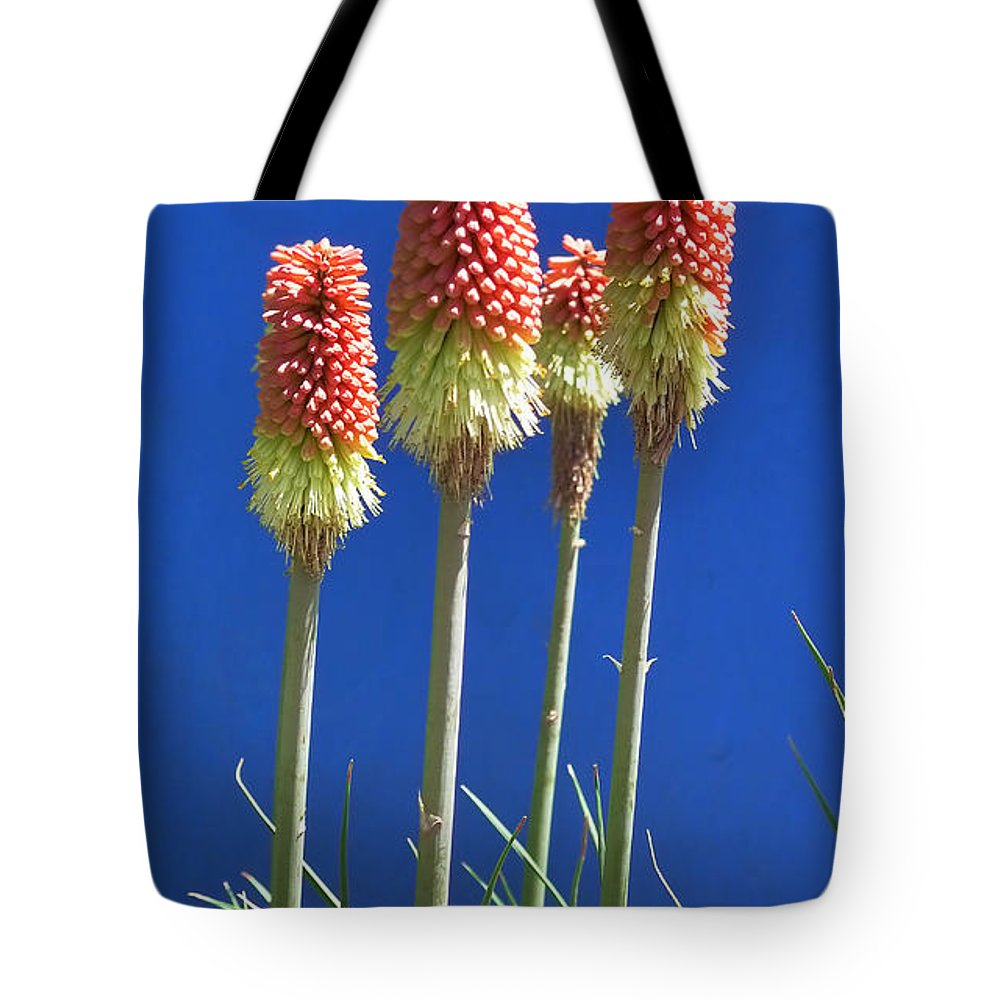 Skip Hunt Tote Bag featuring the photograph The Four Tops by Skip Hunt