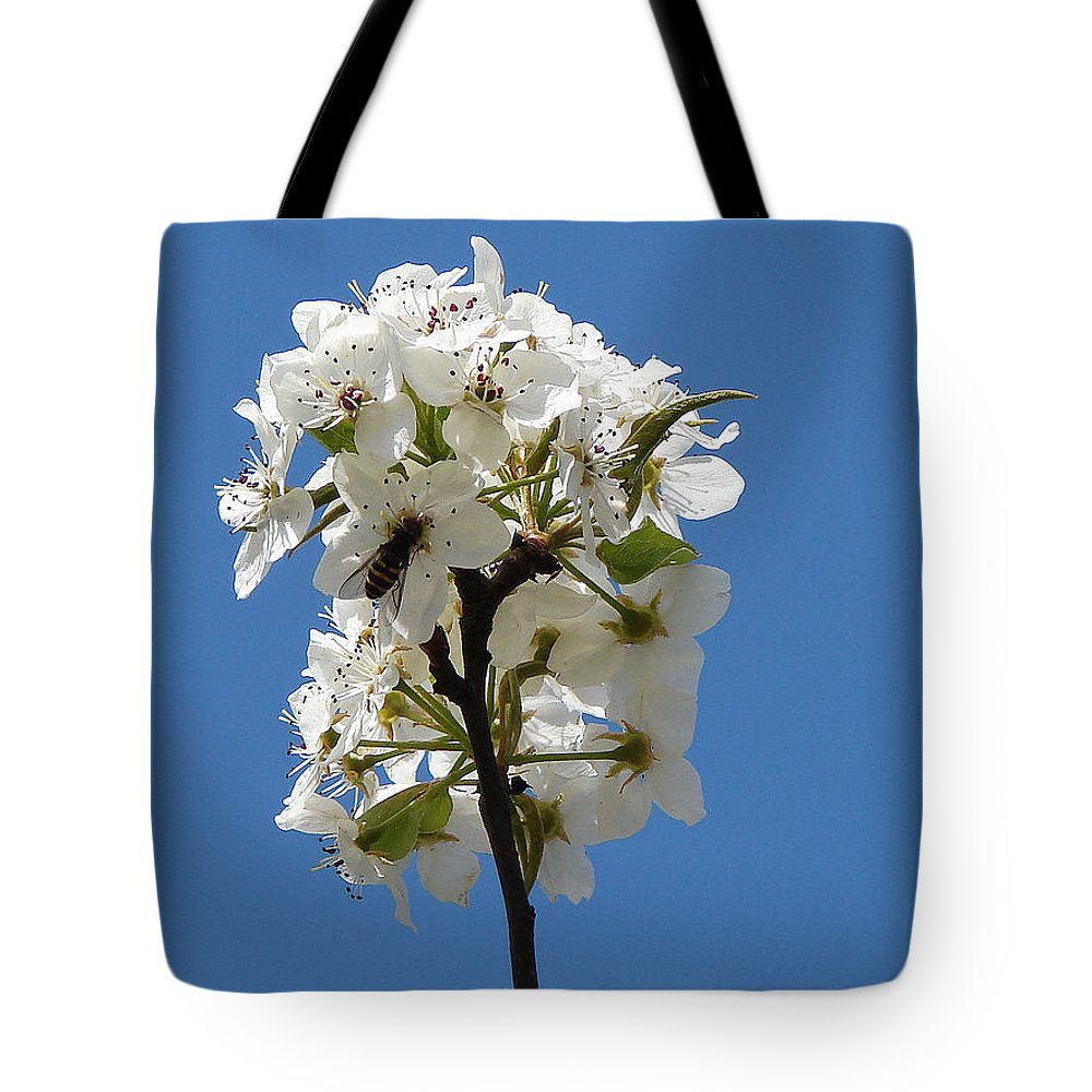 Tote Bag featuring the photograph The Fruits Of Spring by Luciana Seymour