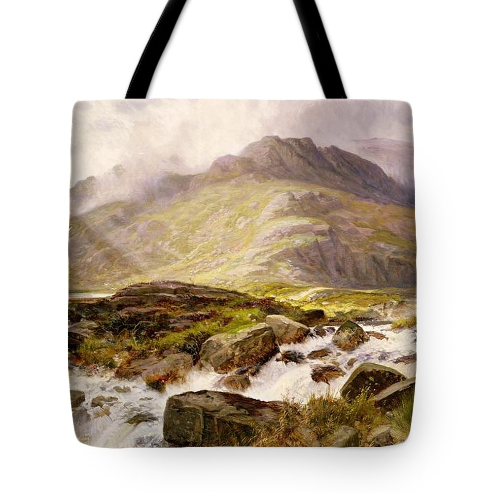 The Tote Bag featuring the painting The Glyder Fawr by Edwin Pettitt