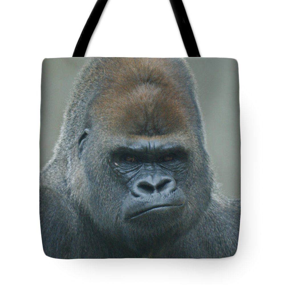 Animals Tote Bag featuring the photograph The Gorilla 4 by Ernie Echols