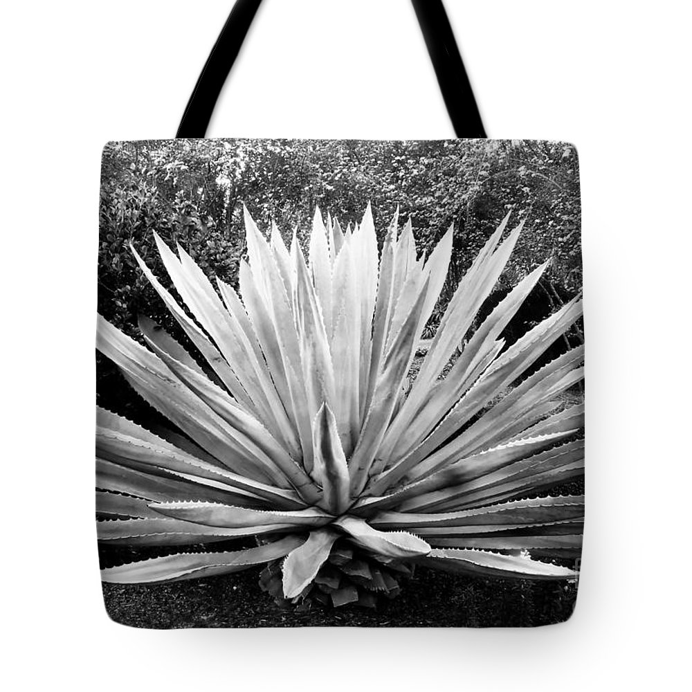Agave Tote Bag featuring the photograph The Great Agave by David Lee Thompson