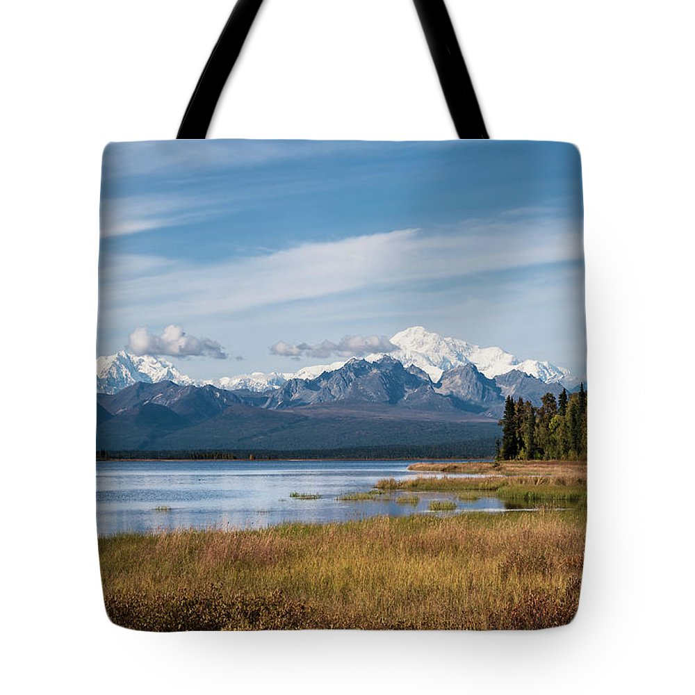 Swan Lake Tote Bag featuring the photograph The Great One by Ted Raynor
