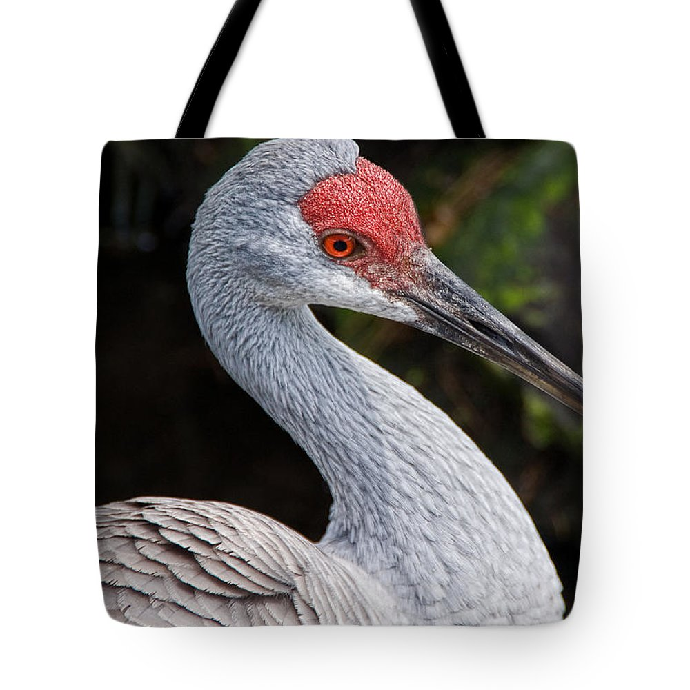 Bird Tote Bag featuring the photograph The Greater Sandhill Crane by Christopher Holmes
