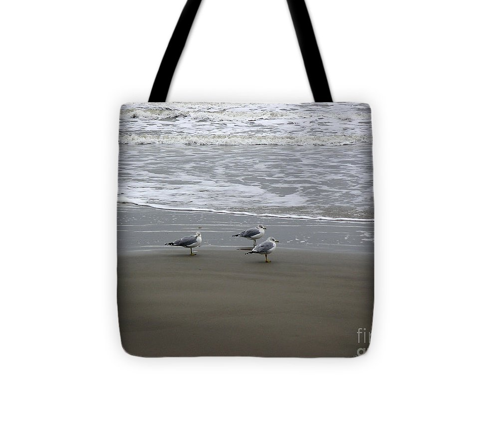 Nature Tote Bag featuring the photograph The Gulf In Shades Of Gray - Formation by Lucyna A M Green