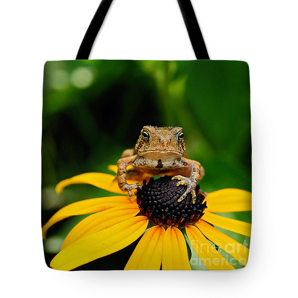 Toad Tote Bag featuring the photograph The Harbinger by Lois Bryan
