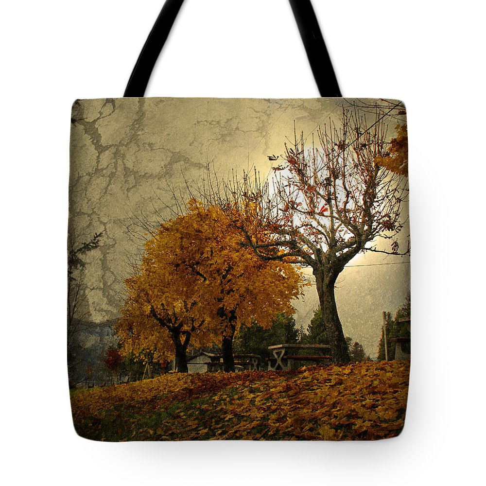 Autumn Tote Bag featuring the photograph The Holder Of Light by Tara Turner