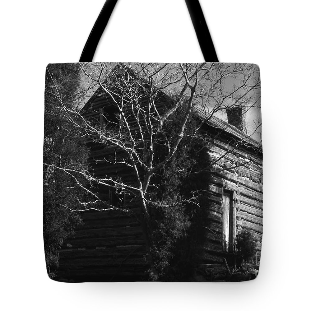 Cabins Tote Bag featuring the photograph The Homestead by Richard Rizzo