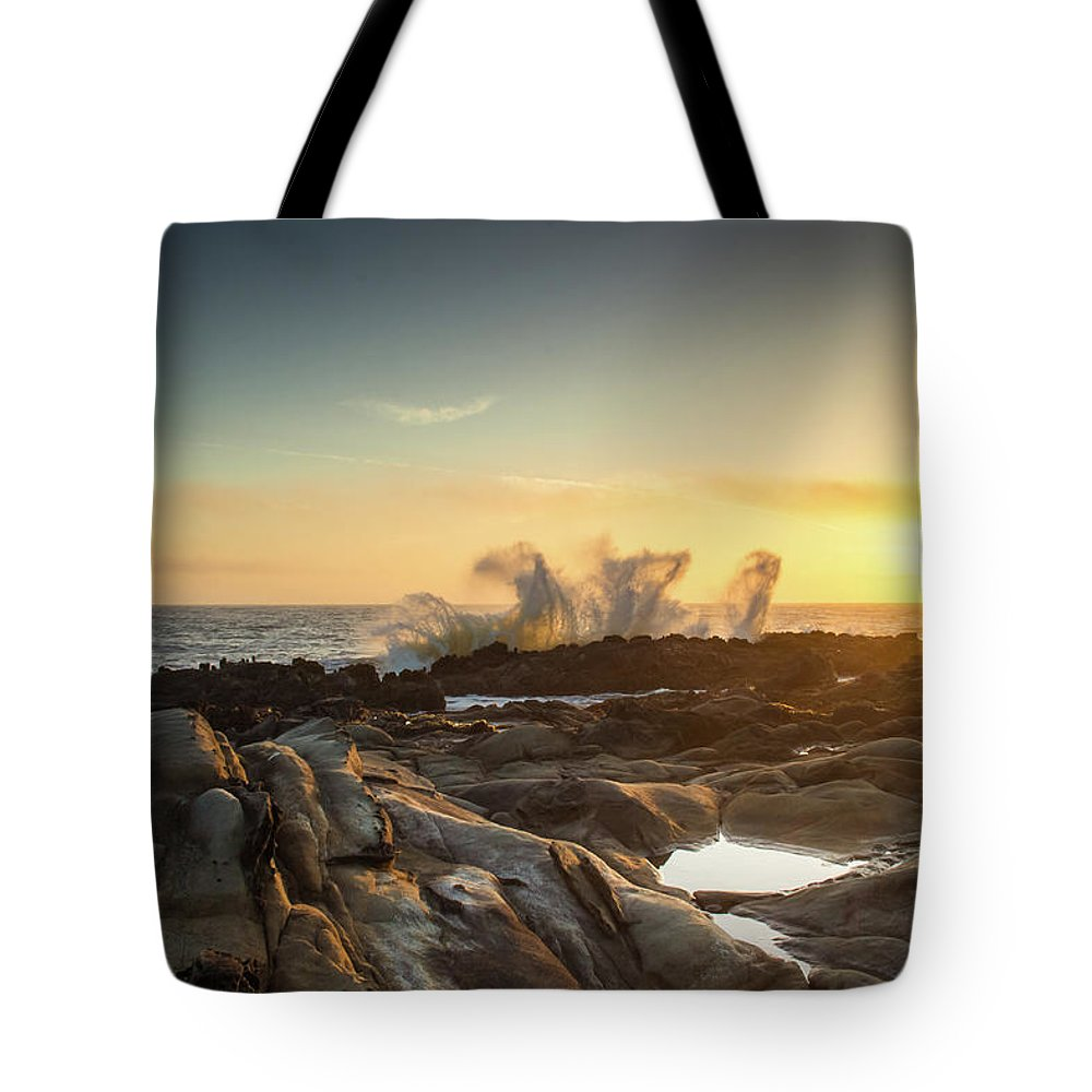 Waves Tote Bag featuring the photograph The Horses Arrive by Marni Moore